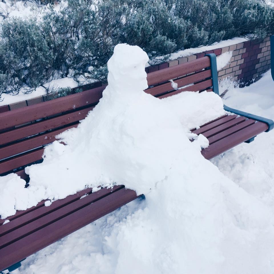 Một anh người tuyết phiên bản đẹp hơn ở bến xe bus trường...